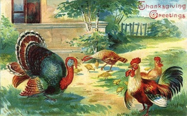 vintage-thanksgiving-turkey-chickens-clipart