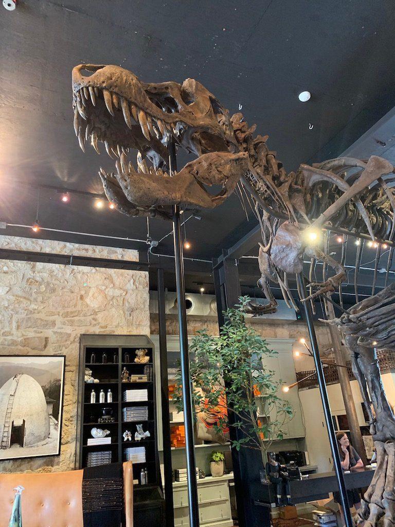 Erin Martin Dinosaur Napa Valley California